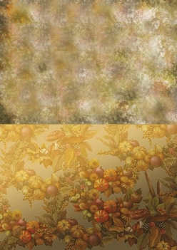 Amy Design Achtergrondpapier Autumn Moments BGS10010  per vel