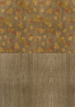 Amy Design Achtergrondpapier Autumn Moments BGS10007  per vel