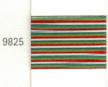 Mettler Borduurgaren Silk Finish Multi kleurnummer 1075-9825