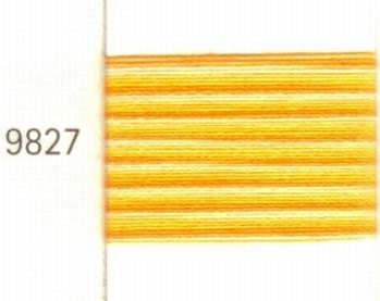 Mettler Borduurgaren Silk Finish Multi kleurnummer 1075-9827