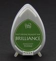 Memento Dew Drops Brilliance Pearlescent Thyme BD-75