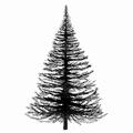 Lavinia Clear Stamp Fir Tree LAV022  per stuk