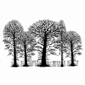 Lavinia Clear Stamp Trees LAV052