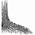 Lavinia Clear Stamp Tree Root LAV160