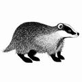 Lavinia Clear Stamp Badger LAV443