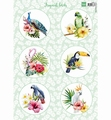 Marianne Design Knipvel Tropical Birds VK9561