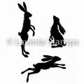 Lavinia Clear Stamp Whimsical Hares LAV482 per stuk