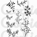 Card-io Clear Stamp Branching Out CDCCSTBRA-01 per stuk