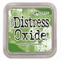 Distress Oxide Mowed Lawn TDO56072 per stuk