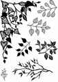 Card-io Clear Stamp Greenery 1    CDCCSTGRE-01