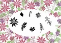 Card-io Majestix Clear Stamp Poinsettias CDMAPO-01