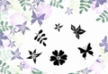 Card-io Majestix Clear Stamp Summer Blooms CDMASU-02