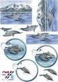 Le Suh Knipvel Dolfijnen 821541