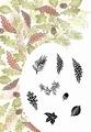Card-io Majestix Clear Stamp Autumn Wreath CDMAAU-01