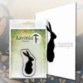 Lavinia Clear Stamp Lola LAV601