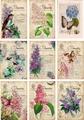 Reprint Vintage Toppers Flowers KP0044