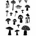Card-io Clear Stamp Tiny Toadstools CDCCSTTI-01
