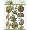 Amy Design knipvel Amazing Owls - Forest Owls CD11564