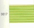 Mettler Borduurgaren Silk Finish Multi kleurnummer 1075-9817