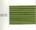 Mettler Borduurgaren Silk Finish Multi kleurnummer 1075-9818
