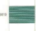 Mettler Borduurgaren Silk Finish Multi kleurnummer 1075-9819