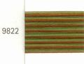 Mettler Borduurgaren Silk Finish Multi kleurnummer 1075-9822