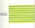 Mettler Borduurgaren Silk Finish Multi kleurnummer 1075-9830