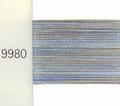 Mettler Borduurgaren Poly Sheen Multi kleurnummer 4820-9980  per stuk